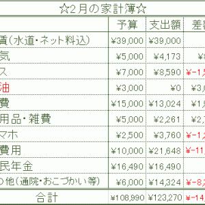 【収入公開】2月の家計簿結果報告 アラフォー独身一人暮らしの収入・支出・電気代・ガス代まとめ