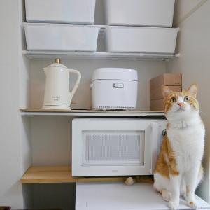 【一人暮らしのキッチン収納】DIYした棚を見直し