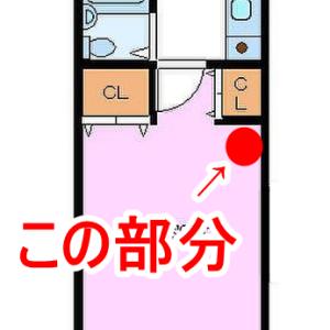 【一人暮らしのインテリア】本棚とクローゼット収納公開