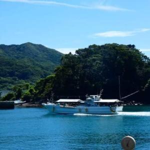 野子地区の港の風景