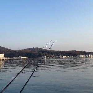 小樽港カレイ釣り