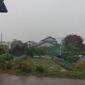 雨と風が強くなってきた❗