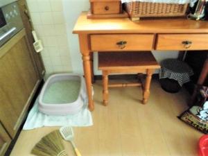 大きなネコトイレ。