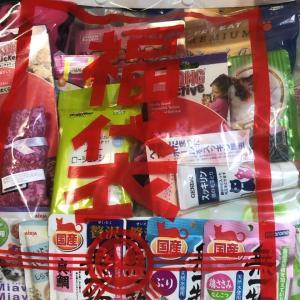 ペットのコジマ猫ちゃん福袋2020中身ネタバレ(3000円福袋)