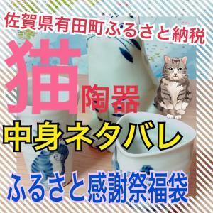 佐賀県有田町ふるさと納税福袋GET!猫ちゃんかわいすぎる