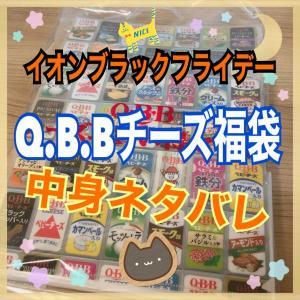 イオンブラックフライデーQ.B.Bチーズ福袋購入!ノベルティが魅力