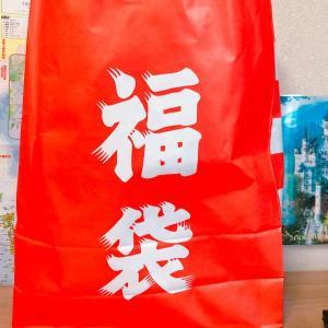 【カワチ薬局福袋2021】 食品・菓子福袋は1080円でこの量入ってた!