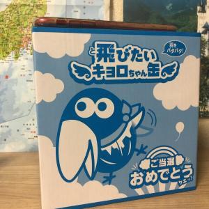 キョロ缶当選!「飛びたいキョロ缶」中身ネタバレ