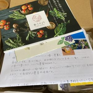 【食べチョク夏の福袋】非加熱はちみつとブルーベリーお取り寄せ!