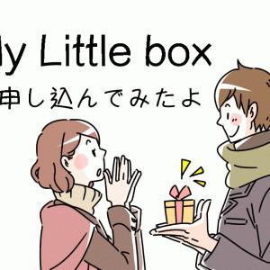 毎月届くワクワクボックス「My Little Box」を申し込みしてみました