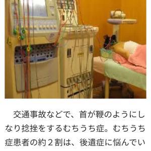 頸部筋群■副交感神経