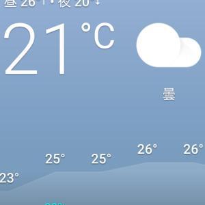 苦痛■台風来ない夏ヒンヤリ7月
