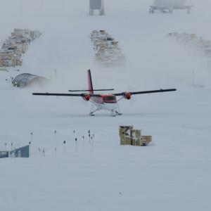 南極ってどんなところ?今日はタロ、ジロの日