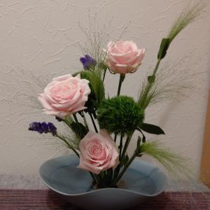 本日のお花&きゅうり