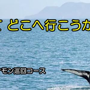 楽しいのか~ ( `―´)ノ(おやじの恋快適化計画)