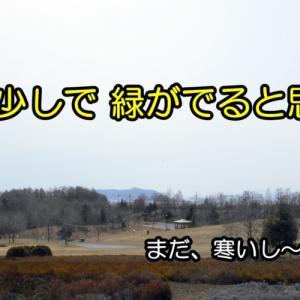 年金手受給続き(*´Д`)(おやじの恋快適化計画)