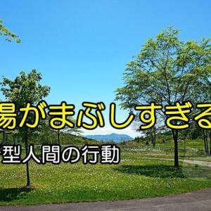 リールの手入れ(/ω\)(おやじの恋快適化計画)