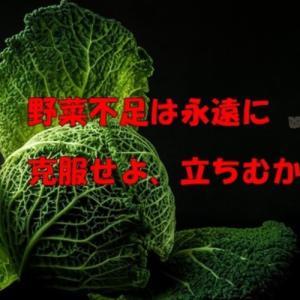 野菜を食べようかな?(おやじの恋快適化計画)