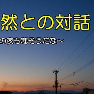 最近のコミュニケーション 俺version(おやじの恋快適化計画)