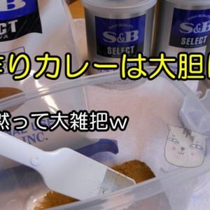 手作りカレーは薬膳グルテンフリー(おやじの恋快適化計画)