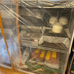 ~部屋に夏を作り出せ~ カブトムシ・クワガタムシ用の簡易温室を自作。ヒーターの代用品は?