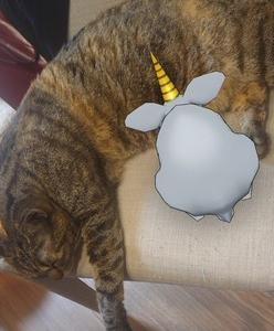 猫、アルミラージに授乳?