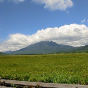 大湿原、尾瀬ヶ原