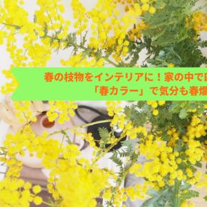 春の枝物をインテリアに!家の中で四季を感じる「春カラー」で気分も春爛漫
