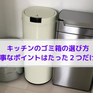 キッチンのゴミ箱の選び方*大事なポイントはたった2つだけ!