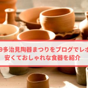 2019多治見陶器まつりをブログでレポ!安くておしゃれな食器を紹介