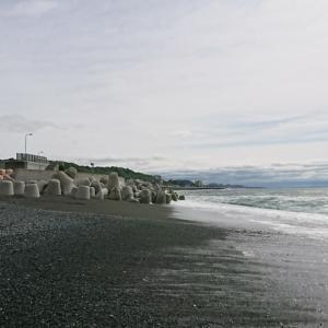 5月例会 5/12小八幡・山王・酒匂海岸