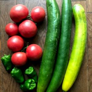 2021-8-2家庭菜園の収穫