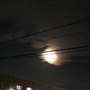 でもねえ月の写真撮れなかったんですよ