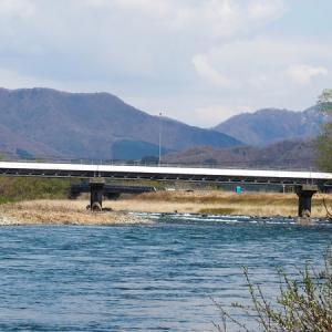 三面川4回目釣行 高速上流