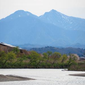 三面川5回目釣行 ウライ下流
