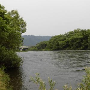 三面川最後の釣行 高速上流