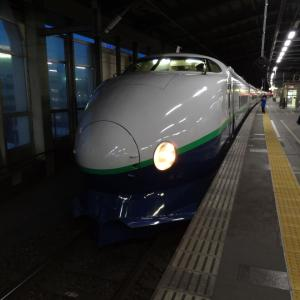 国鉄型で新潟満喫 夫婦で全線完乗 2013年2月 銀山温泉と新潟近郊乗りつぶし -3(完)