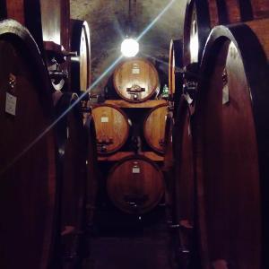教皇にも愛されたワインの街 モンテプルチャーノ
