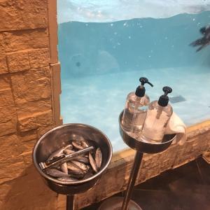 【池袋】ペンギンのいるBAR 2