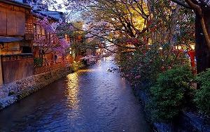 歩いて巡れる京都の桜名所:祇園~河原町~御池