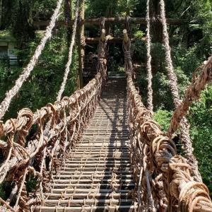 吊り橋効果はこういうところでこそ狙え。『祖谷渓ーかずら橋』