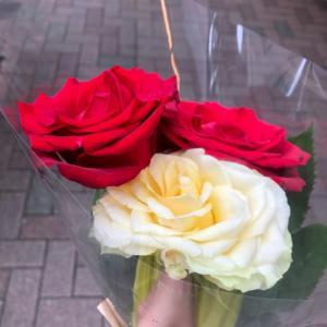 ツインレイ女性 自己愛開花セッション❤️