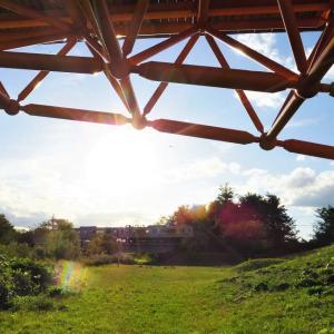 橋の下からの風景。