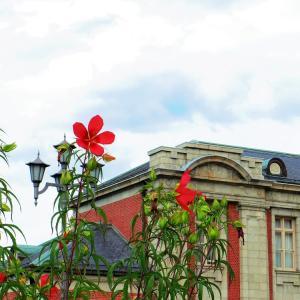 紅葉葵と洋館と。