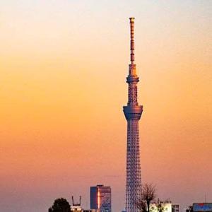 谷根千 朝倉彫塑館の夕景