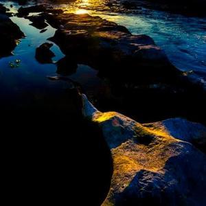 多摩川の朝