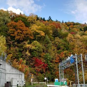 紅葉(札幌国際スキー場)