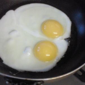 アローカナという鶏の卵!