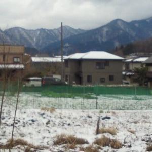 季節外れの雪になりました。!