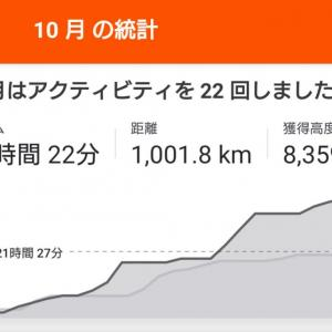 10月の走行結果(月間1000km達成できたかな?)